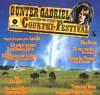 Cover: Verschiedene Interpreten - Verschiedene Interpreten / Das Deutsche Country Festival