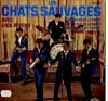 Cover: Les Chats Sauvages - Les Chats Sauvages avec Dick Rivers