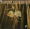 Cover: Albert Hammond - Cant sus grandes Exitos en Espanol e Ingles