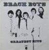 Cover: The Beach Boys - The Beach Boys / Greatest Hits