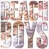 Cover: Beach Boys, The - The Beach Boys