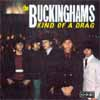 Cover: The Buckinghams - Kind Of A Drag