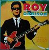 Cover: Roy Orbison - Roy Orbison / The Singles Collection 1965 - 1973 (2 LP)