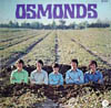 Cover: The Osmonds - The Osmonds / Osmonds