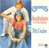 Cover: The Carpenters - The Carpenters / Jambalaya / Mr. Guder