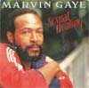 Cover: Marvin Gaye - Marvin Gaye / Sexual Healing (vocal / instrumental)