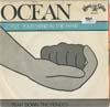 Cover: Ocean - Put Your Hand In The Hand / Tear Down The Fences